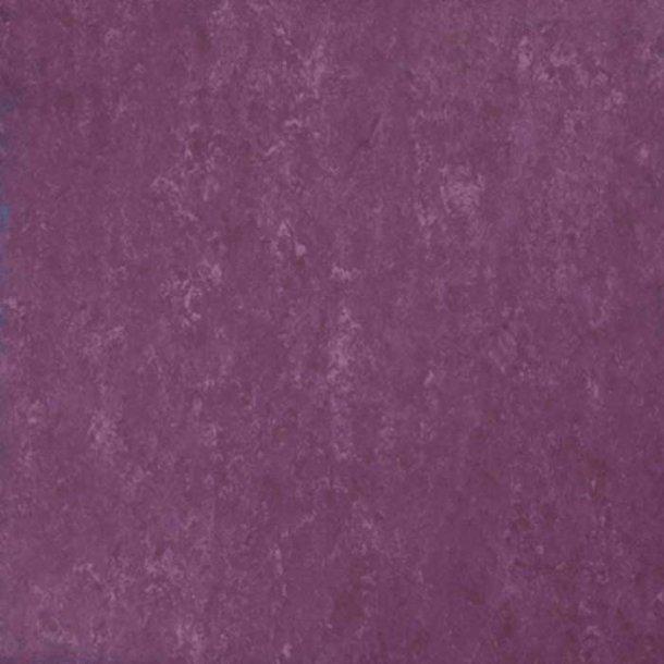 Linoleumsgulv Begonia Tarkett Veneto xf²