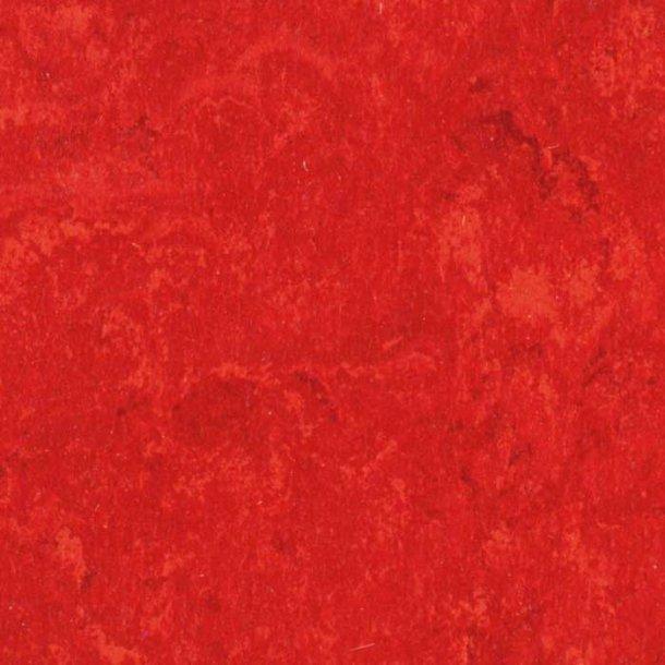 Linoleumsgulv Carmine Tarkett Veneto xf²