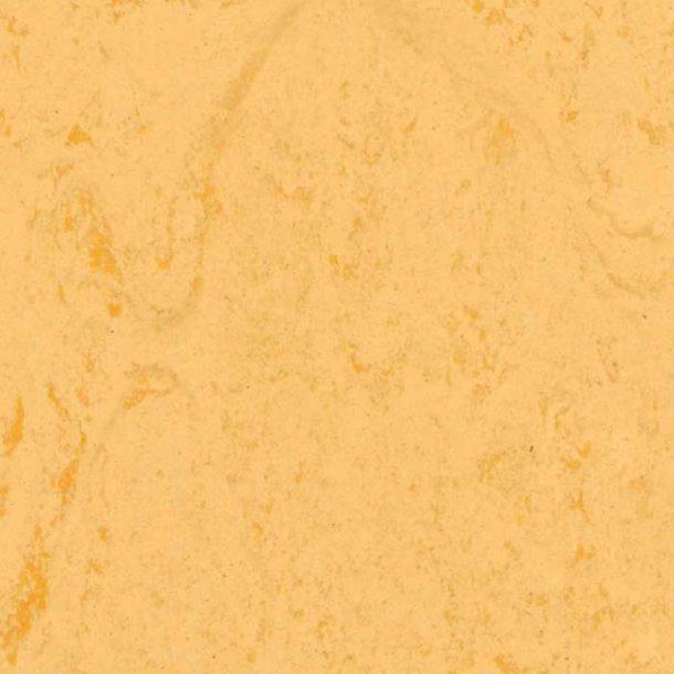 Linoleumsgulv Corn Tarkett Veneto xf²